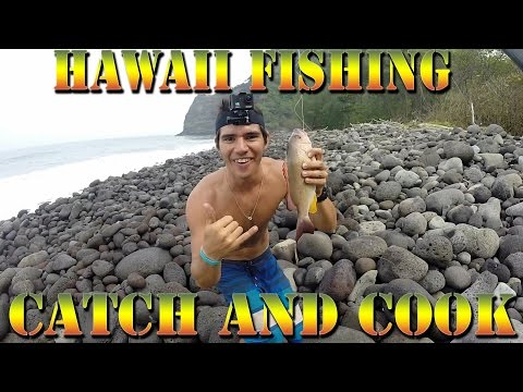 Ultimate Hawaii Catch and Cook - Hiking Honokāne Nui, Snapper Fishing, Camp Fire Fish Cookup -BODT 4