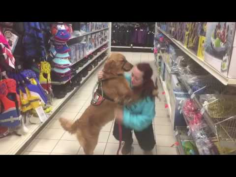 Service Dog Alerting To Seizure