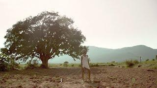 Parvaaz - Shaad (Official Video)