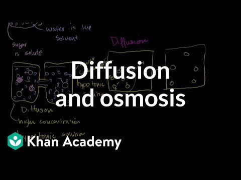 Diffusion and osmosis | Membranes and transport | Biology | Khan Academy