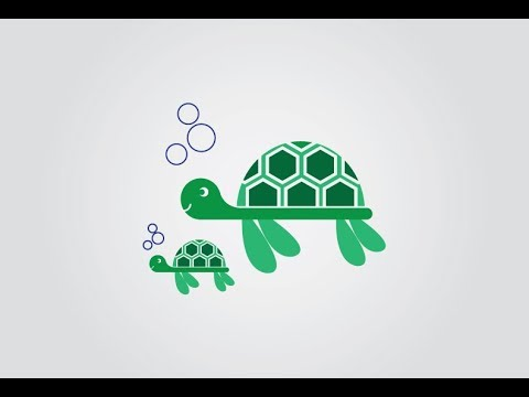 How to Draw Turtles Adobe Illustrator CS6