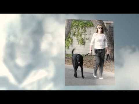 Guide Dog Training  Guide Dogs for Blind & Visually Impaired