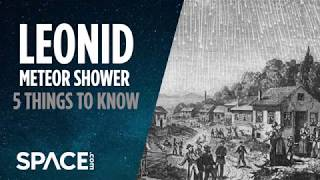 The Leonid Meteor Shower: 5 Things to Know