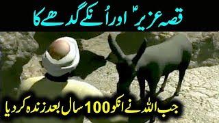 The Story of Prophet Uzair (AS) | Urdu / Hindi