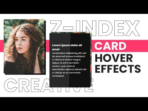 CSS Z-Index Hover Transition Card Effect   CSS Image Hover Effects