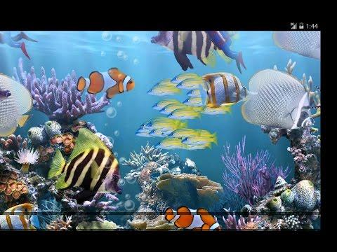 The Real Aquarium HD - App Review - Amazing Wallpaper Application