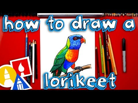 How To Draw A Realistic Rainbow Lorikeet