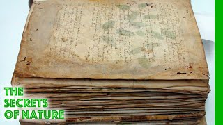 Voynich Code - The Worlds Most Mysterious Manuscript - The Secrets of Nature
