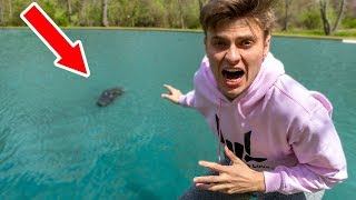 MONSTER IN POND!! (CAUGHT ON CAMERA)