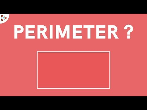What is the Perimeter of a Rectangle?