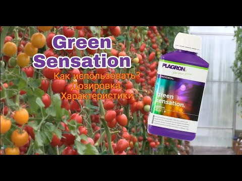 Стимулятор Green sensation 5 L - мощный стимулятор  цветения!