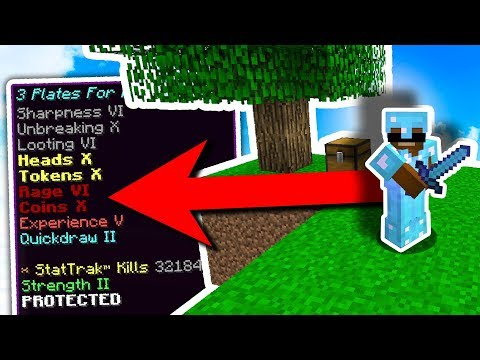 THE MOST EXPENSiVE iTEM ON MY MiNECRAFT SERVER WAS JUST SOLD 😮 ( Minecraft Skyblock )