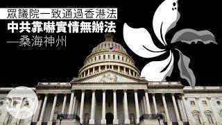 【桑海神州】美眾議院一致通過香港法,中共靠嚇實情冇辦法