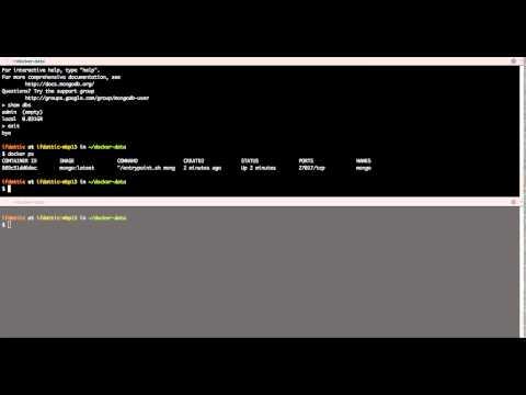 MongoDB with Docker