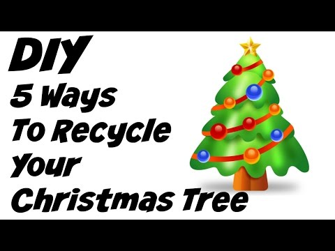 5 Ways To Recycle Your Christmas Tree