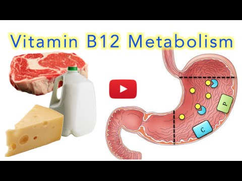 Vitamin B12 (Cobalamin) Absorption, Metabolism and Deficiency - MADE EASY