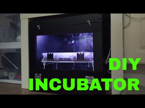 DIY PVC Reptile Incubator