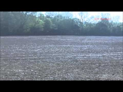 Indiana Arrowhead Hunting