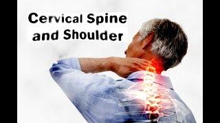 Cervical spine and shoulder