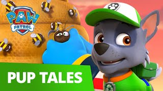 Beehive Rescue with Rocky! 🐝 PAW Patrol Pup Tales Rescue Episode!