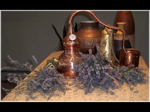 Distilling Herbs by Soapsmith
