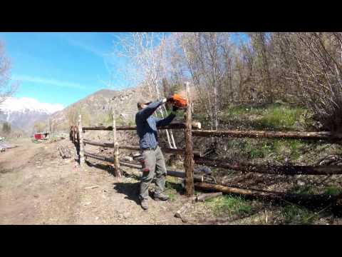 Lodge Pole Fencing Around the Homestead Pasture