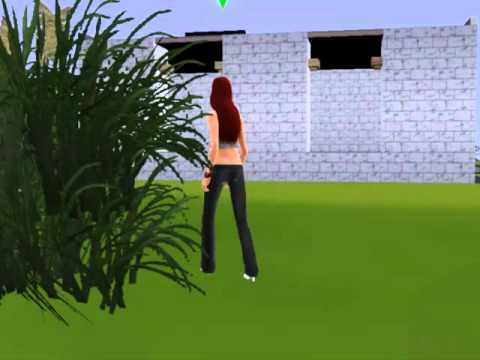 Butterfly catch- Sims 3