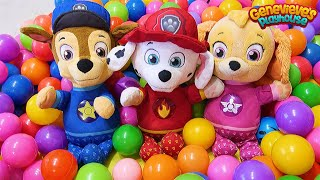 Paw Patrol Baby Pups Home Alone and get a New House Learning Videos for Kids!