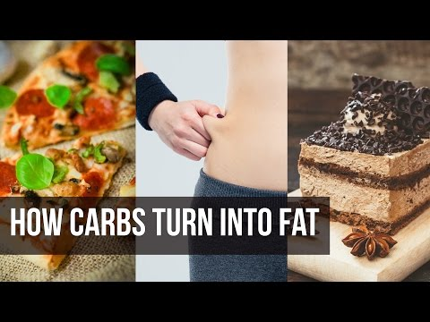 How Carbs Turn to Fat: Weight Loss Secret- Thomas DeLauer