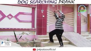 | Dog Searching Prank | By Nadir Ali In | P4 Pakao | 2018