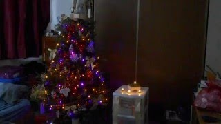 Yule 2013 - My Tree and Room