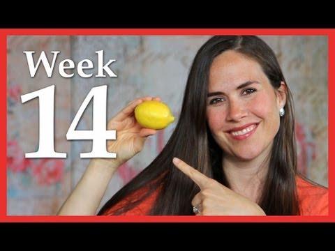 My Pregnancy @ 14 Weeks - 2nd Baby Natural