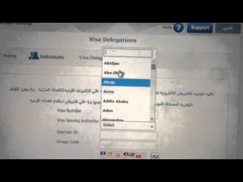 how i can check my visa online