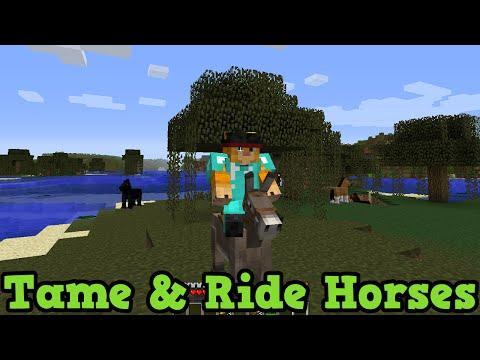 Minecraft Xbox 360 + PS3: How To Tame & Ride Horses + Donkeys