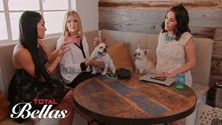 Nikki Bella confronts Brie Bella about taking Winston to her house: Total Bellas, Sept. 20, 2017
