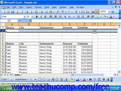 Excel 2003 Tutorial Creating Advanced Filters Microsoft Training Lesson 28.1