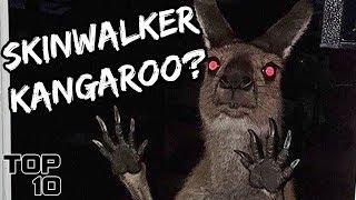 Top 10 Scary Skinwalker Stories
