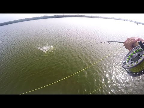 1st Fish on the Fly! Texas Saltwater Fly Fishing