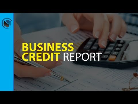 Business Credit Report