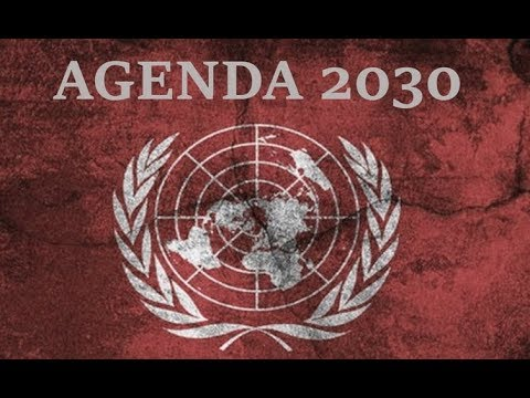 INSANE GLOBALIST ARTICLE ABOUT INSTITUTING A WORLDWIDE SINGLE PAYER SYSTEM. AGENDA 2030