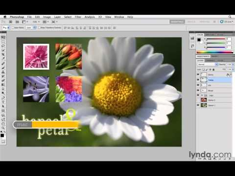 Photoshop CS5 Tutorials-23 Essential Layer Effects and Styles 4. Copy Effects