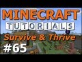 Minecraft Tutorials - E65 Wither Skeleton and Grenades (Survive and Thrive Season 4)