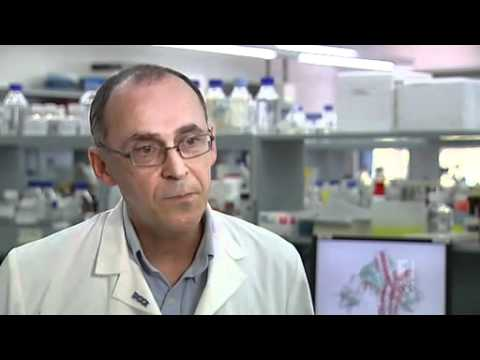 Scientists find key to botulinum toxin
