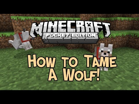 [0.9.0] HOW TO TAME A WOLF! - Minecraft Pocket Edition Update 0.9.0
