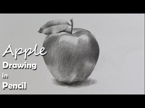 How to Draw An Apple in Pencil | step by step how to use pencil strokes