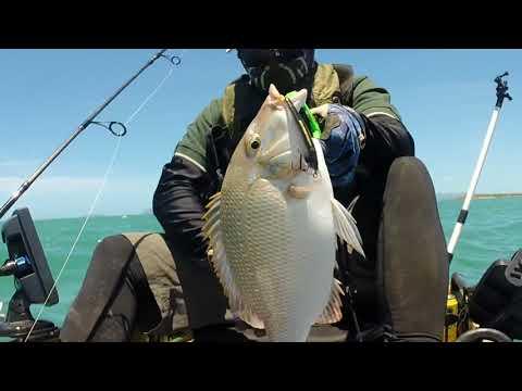 Bowen Kayak Fishing Part 2