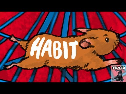 How Do Habits REALLY Work? (THE TRUTH)