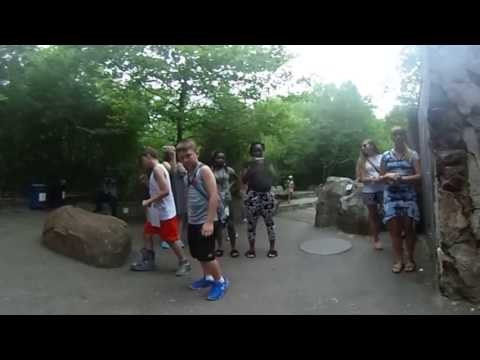 DC 360: Otters at the Smithsonian's National Zoo