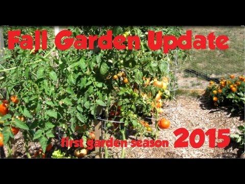 Fall Update for my Garden