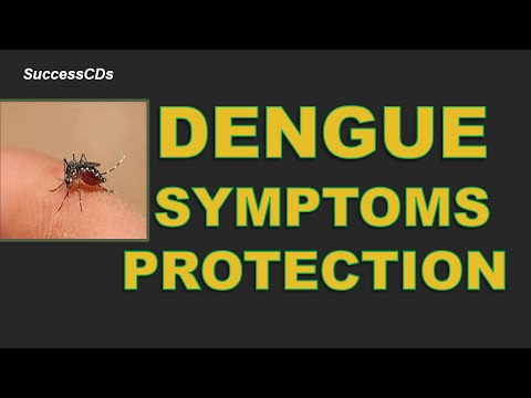 Dengue fever , Symptoms and its Protection